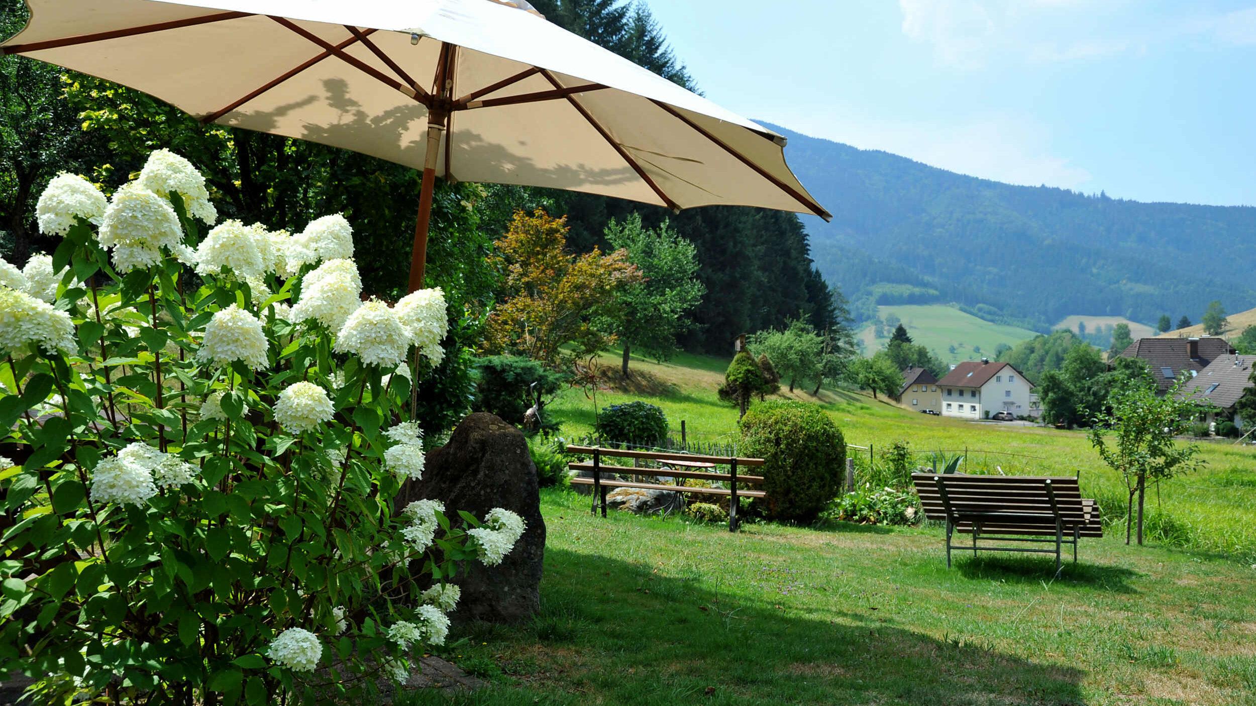Bänke und Sonnenschirm mit Landschaftsblick