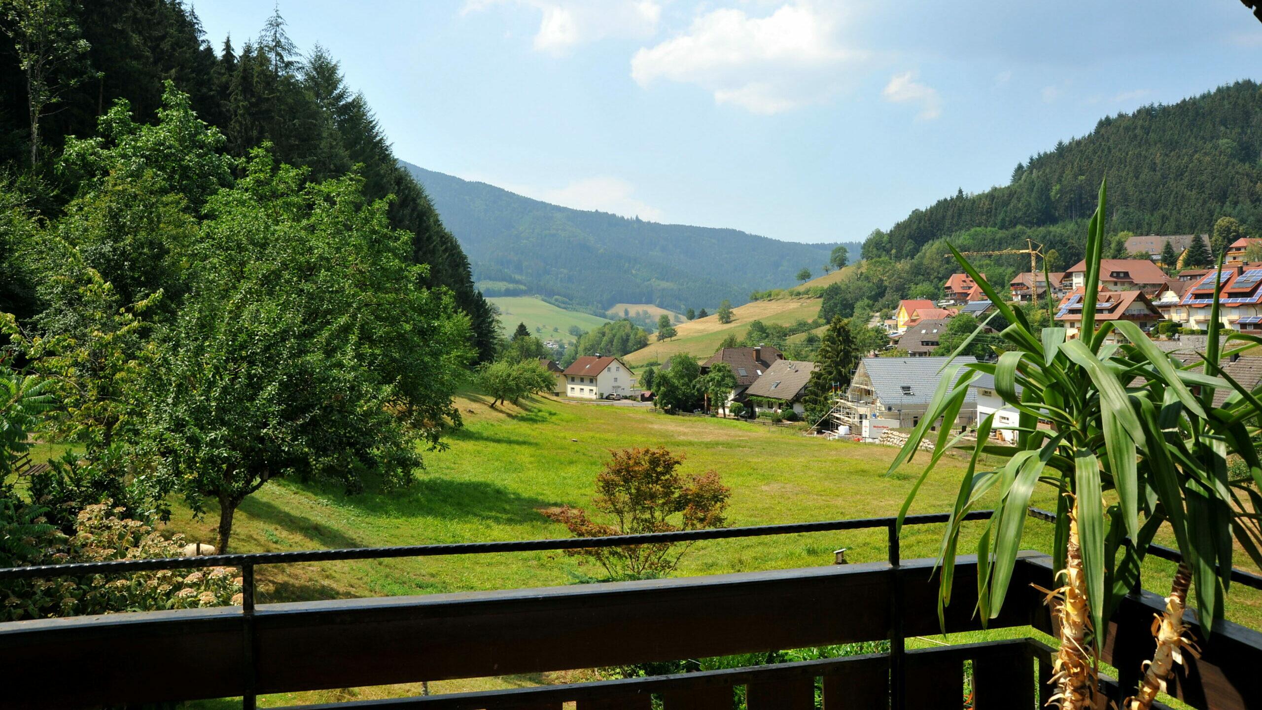 Blick vom Balkon aus der Ferienwohnung Kandelblick