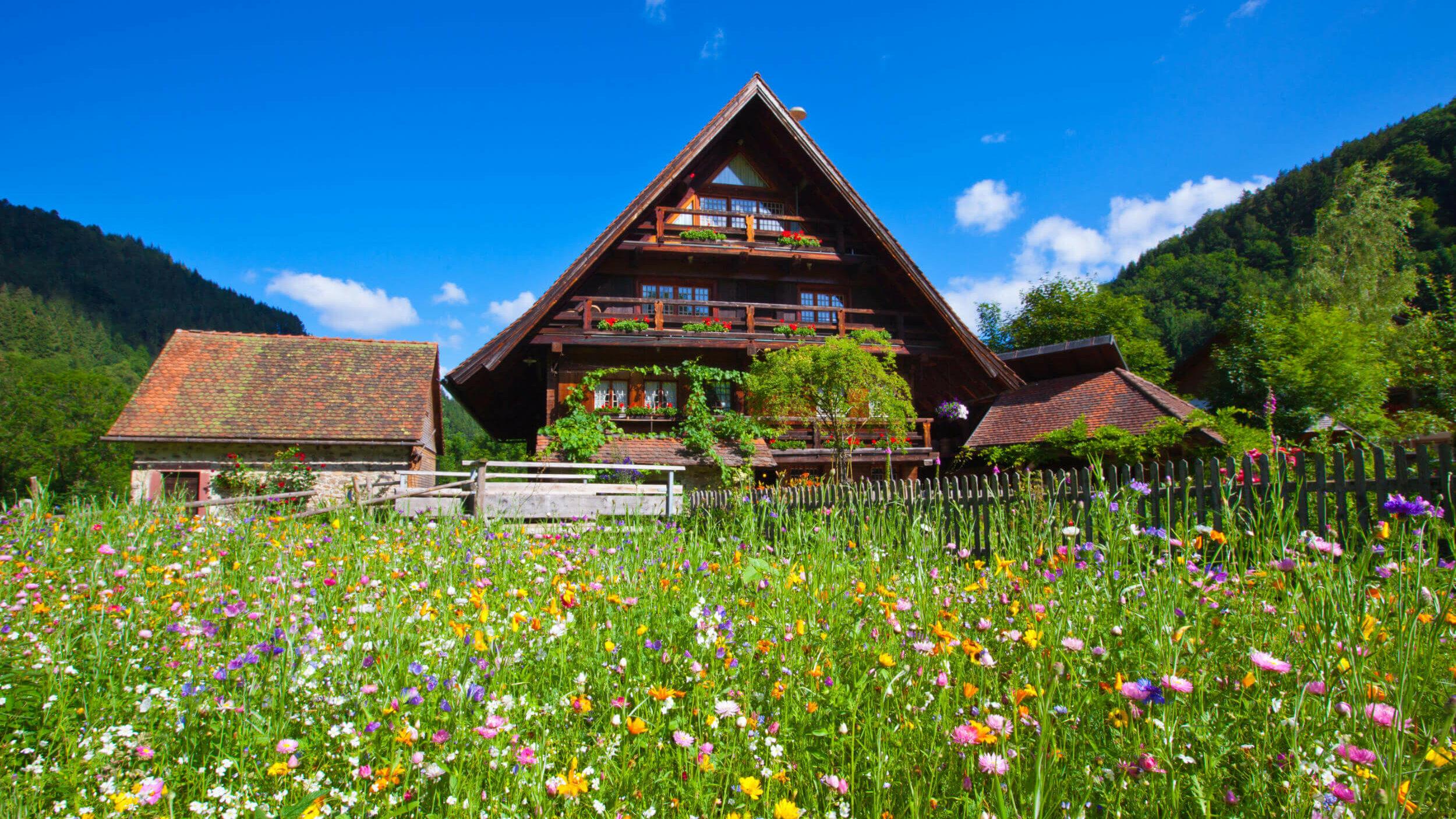 Stubenhof mit bunter Blumenwiese