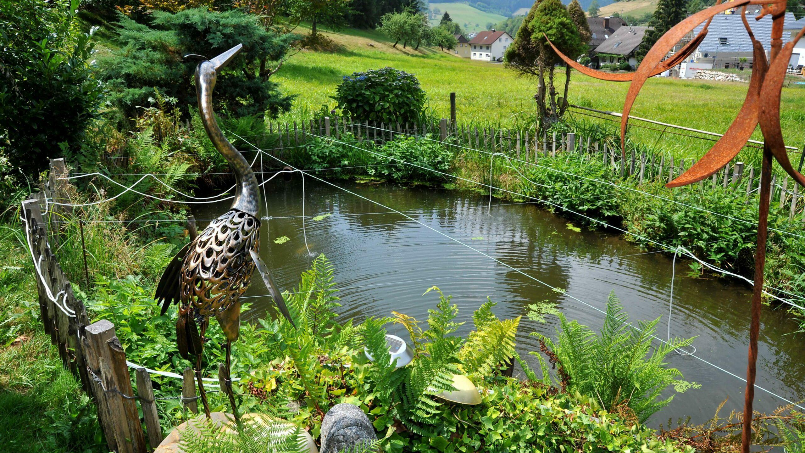Der Teich des Stubenhofes